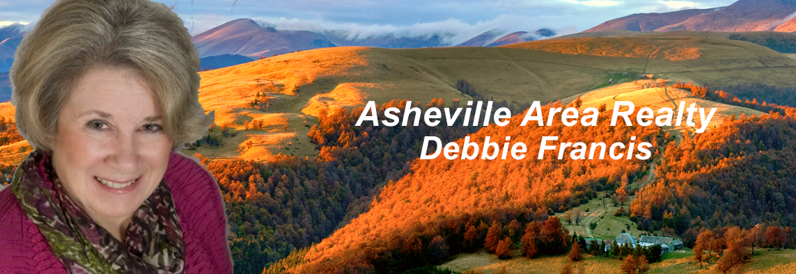 Asheville NC Homes for Sale